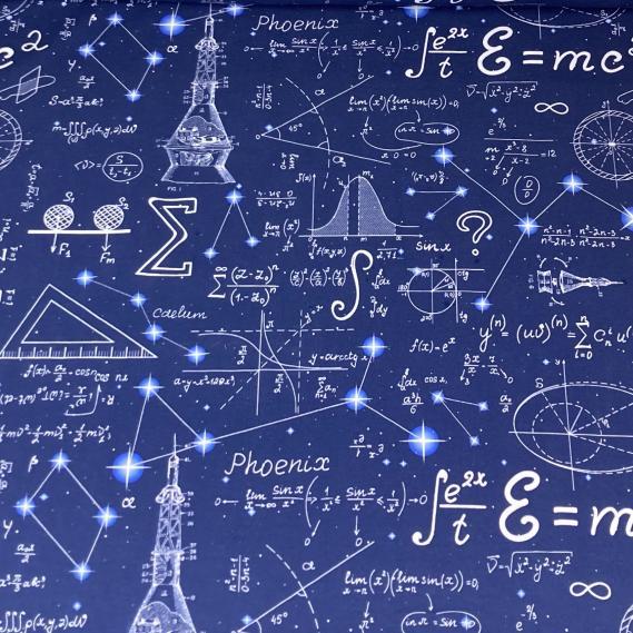 Baumwolljersey Einstein Physik